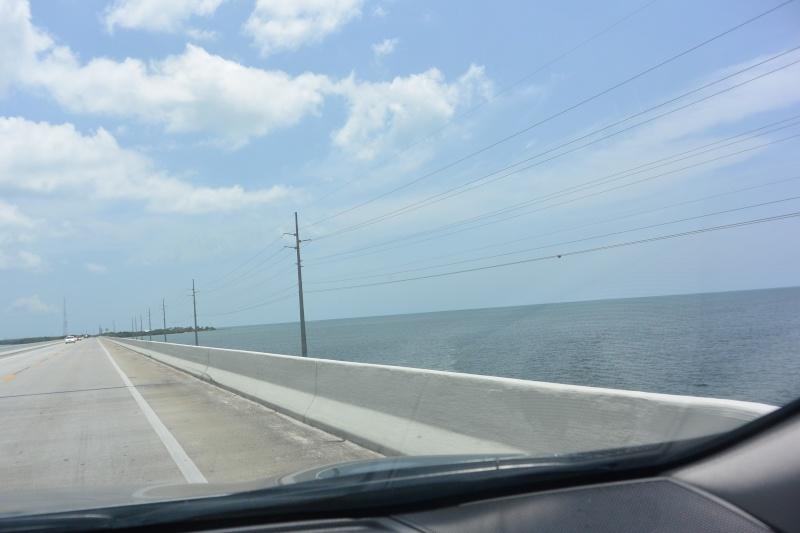 Le merveilleux voyage en Floride de Brenda et Rebecca en Juillet 2014 - Page 18 2915
