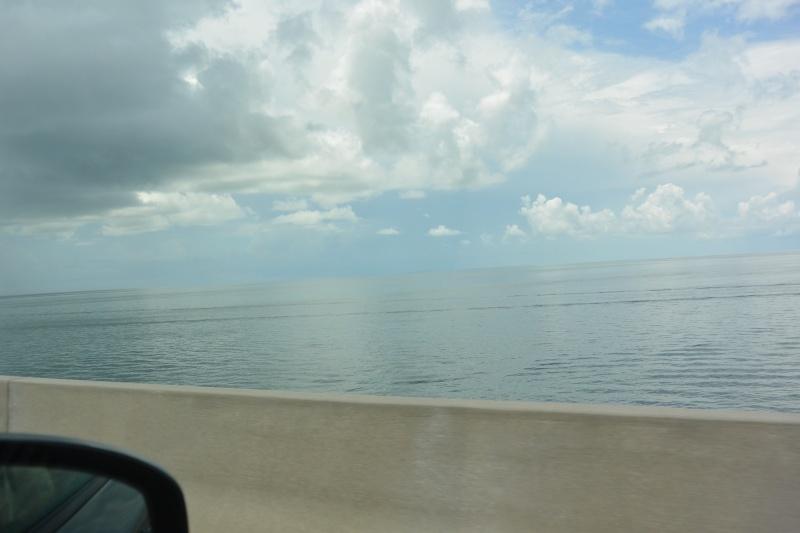 Le merveilleux voyage en Floride de Brenda et Rebecca en Juillet 2014 - Page 16 3012