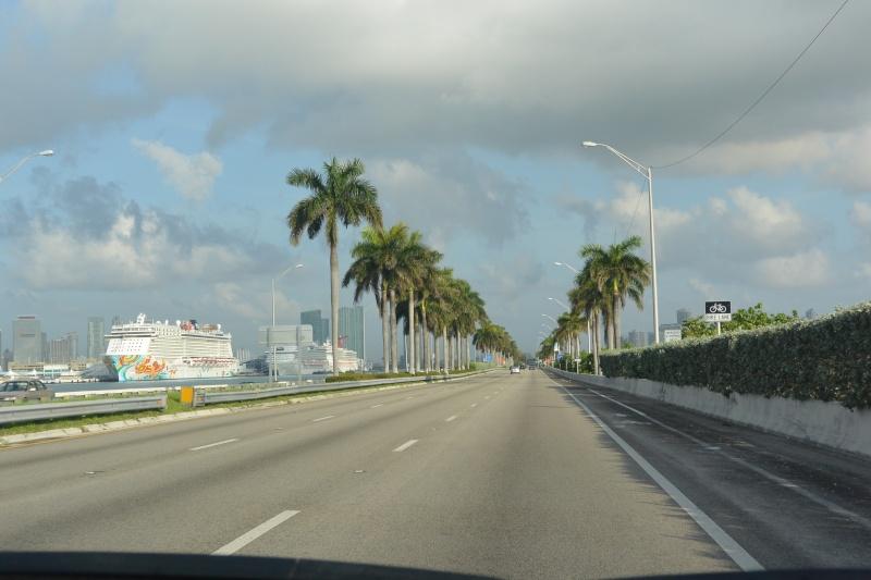 Le merveilleux voyage en Floride de Brenda et Rebecca en Juillet 2014 - Page 18 316