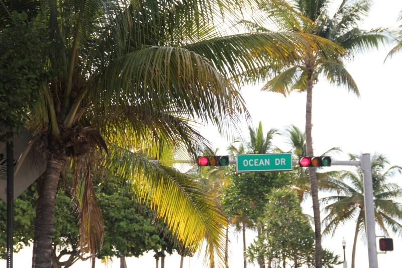 Le merveilleux voyage en Floride de Brenda et Rebecca en Juillet 2014 - Page 18 317