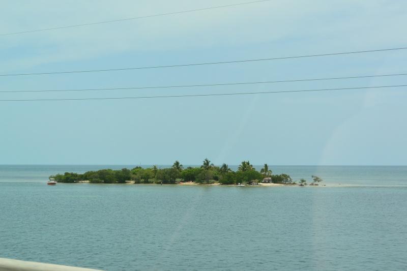 Le merveilleux voyage en Floride de Brenda et Rebecca en Juillet 2014 - Page 18 3215