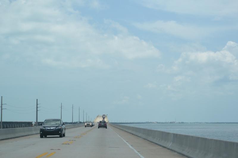 Le merveilleux voyage en Floride de Brenda et Rebecca en Juillet 2014 - Page 18 3315