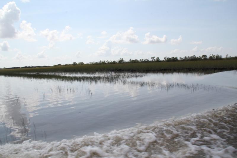 Le merveilleux voyage en Floride de Brenda et Rebecca en Juillet 2014 - Page 18 3316