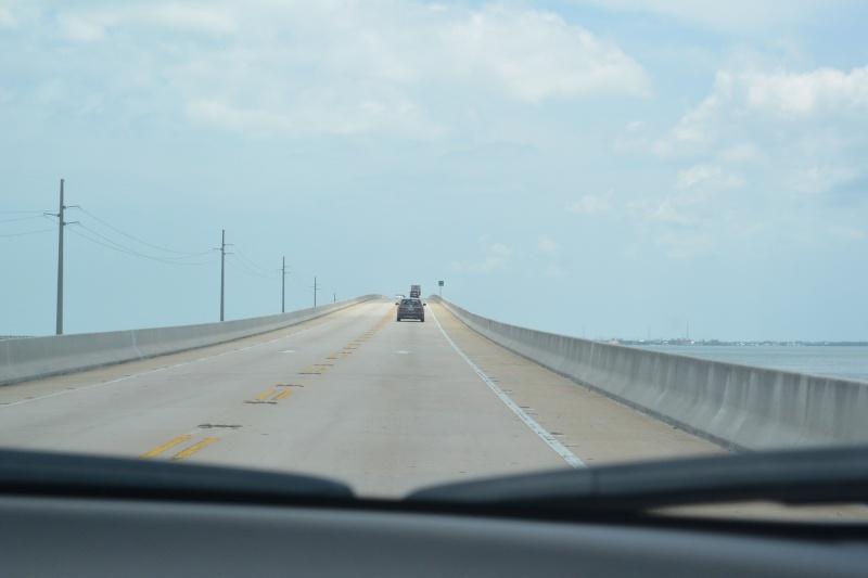 Le merveilleux voyage en Floride de Brenda et Rebecca en Juillet 2014 - Page 18 3415