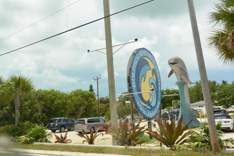 Le merveilleux voyage en Floride de Brenda et Rebecca en Juillet 2014 - Page 16 3512