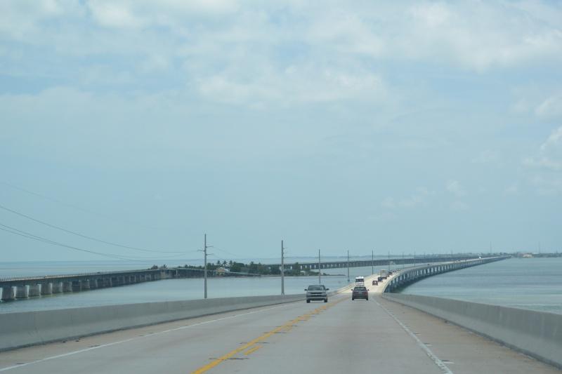 Le merveilleux voyage en Floride de Brenda et Rebecca en Juillet 2014 - Page 18 3515