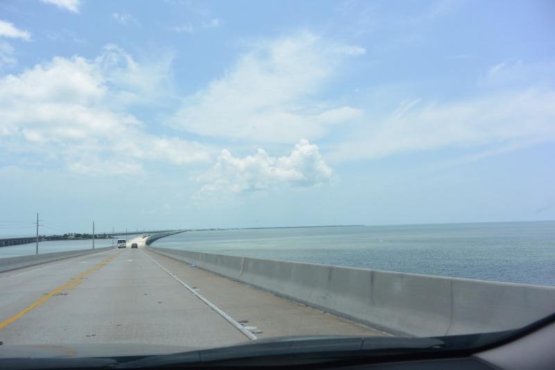 Le merveilleux voyage en Floride de Brenda et Rebecca en Juillet 2014 - Page 18 3615