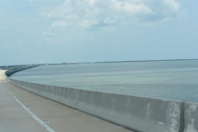 Le merveilleux voyage en Floride de Brenda et Rebecca en Juillet 2014 - Page 18 3715