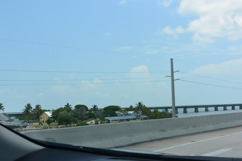 Le merveilleux voyage en Floride de Brenda et Rebecca en Juillet 2014 - Page 18 3815