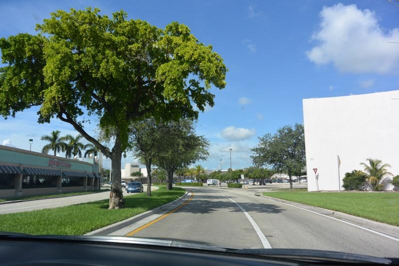 Le merveilleux voyage en Floride de Brenda et Rebecca en Juillet 2014 - Page 16 4011