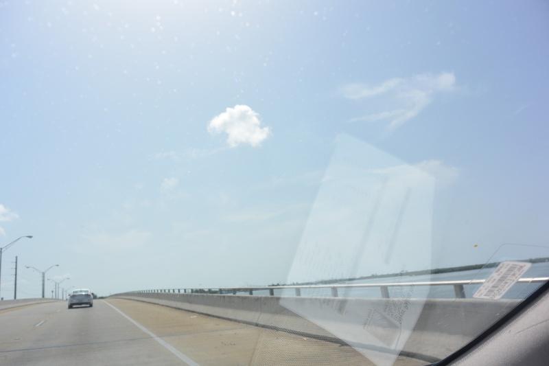 Le merveilleux voyage en Floride de Brenda et Rebecca en Juillet 2014 - Page 18 415