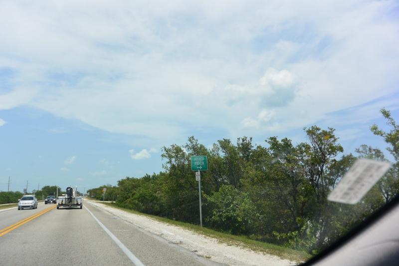 Le merveilleux voyage en Floride de Brenda et Rebecca en Juillet 2014 - Page 18 4215