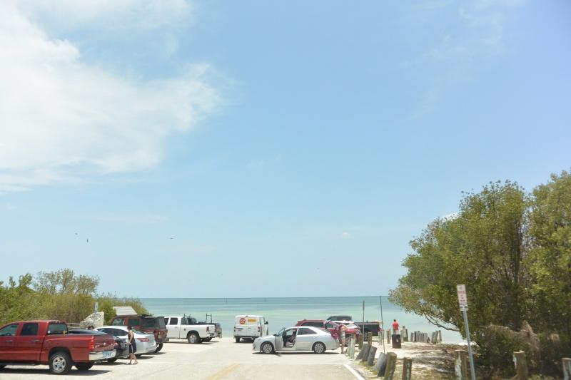 Le merveilleux voyage en Floride de Brenda et Rebecca en Juillet 2014 - Page 18 4315