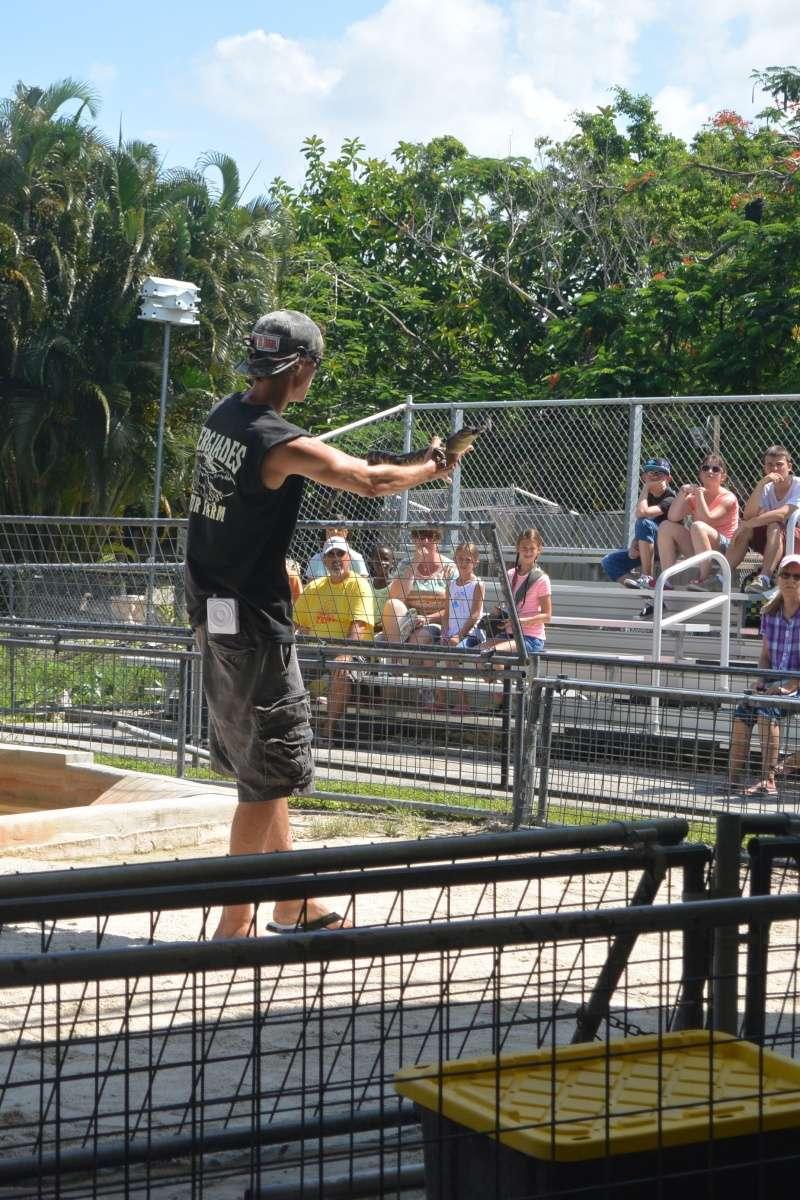 Le merveilleux voyage en Floride de Brenda et Rebecca en Juillet 2014 - Page 18 4316