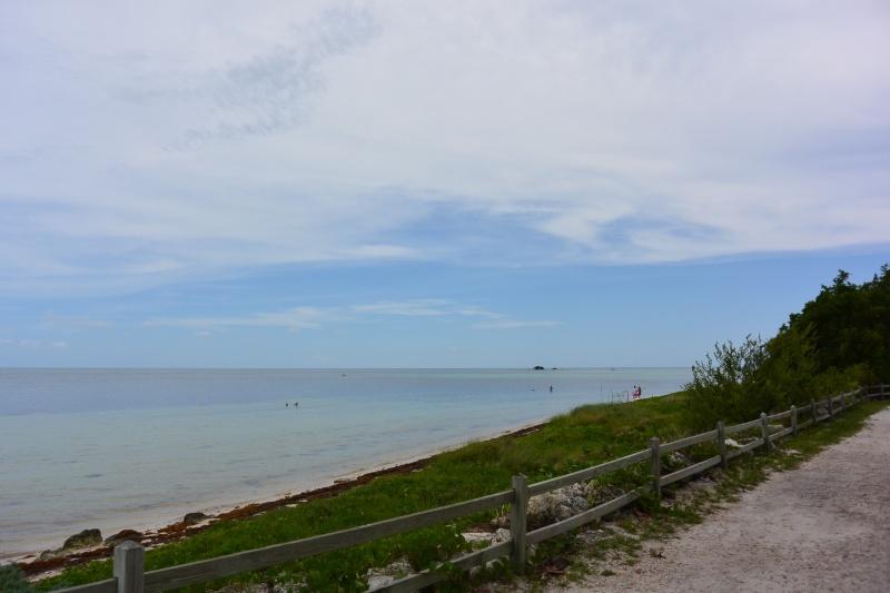 Le merveilleux voyage en Floride de Brenda et Rebecca en Juillet 2014 - Page 16 4412