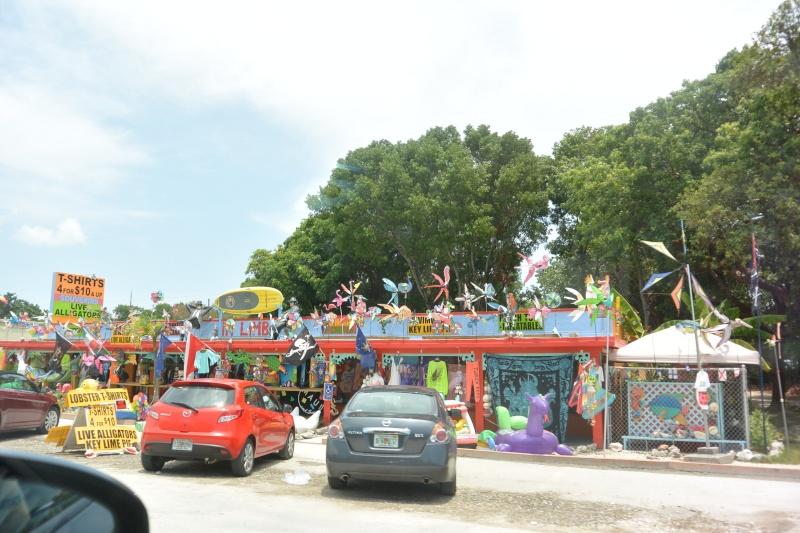 Le merveilleux voyage en Floride de Brenda et Rebecca en Juillet 2014 - Page 18 4415