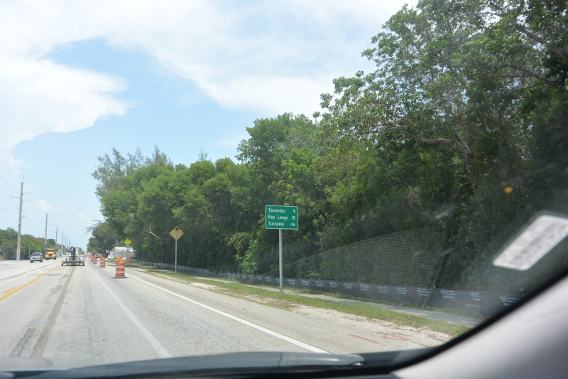 Le merveilleux voyage en Floride de Brenda et Rebecca en Juillet 2014 - Page 18 4515