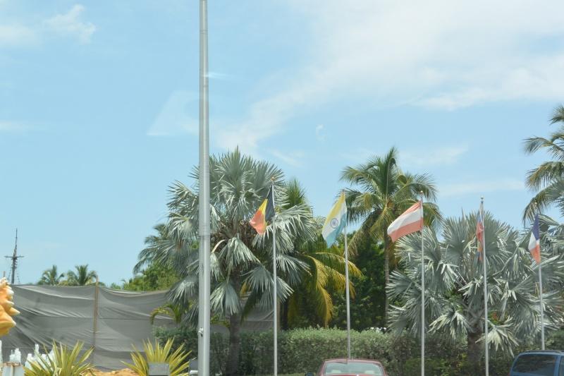 Le merveilleux voyage en Floride de Brenda et Rebecca en Juillet 2014 - Page 18 4715