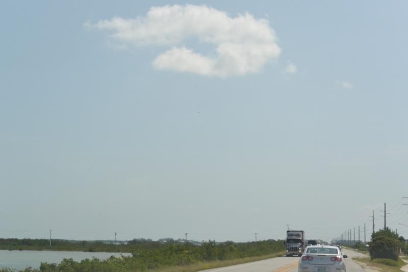 Le merveilleux voyage en Floride de Brenda et Rebecca en Juillet 2014 - Page 18 515