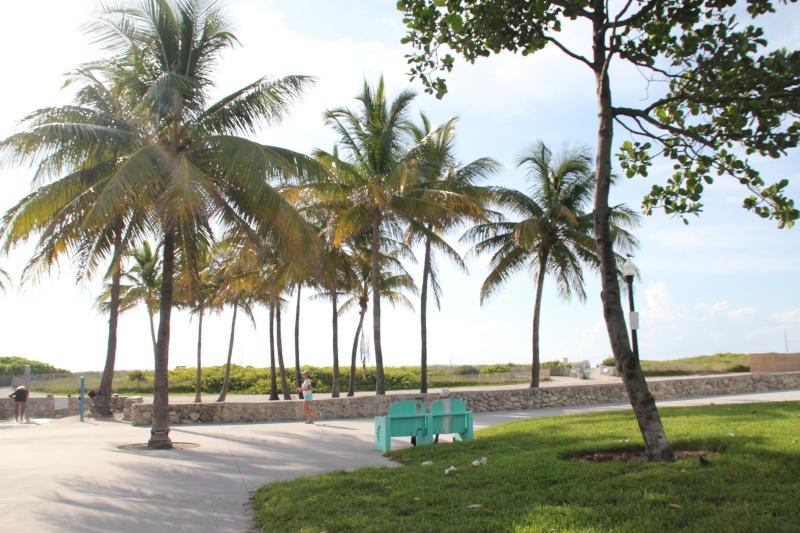 Le merveilleux voyage en Floride de Brenda et Rebecca en Juillet 2014 - Page 18 517