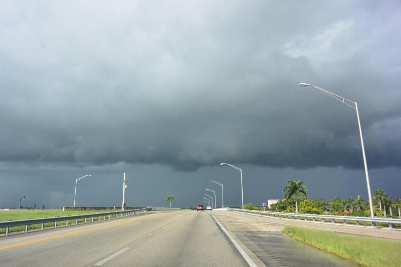 Le merveilleux voyage en Floride de Brenda et Rebecca en Juillet 2014 - Page 18 5515
