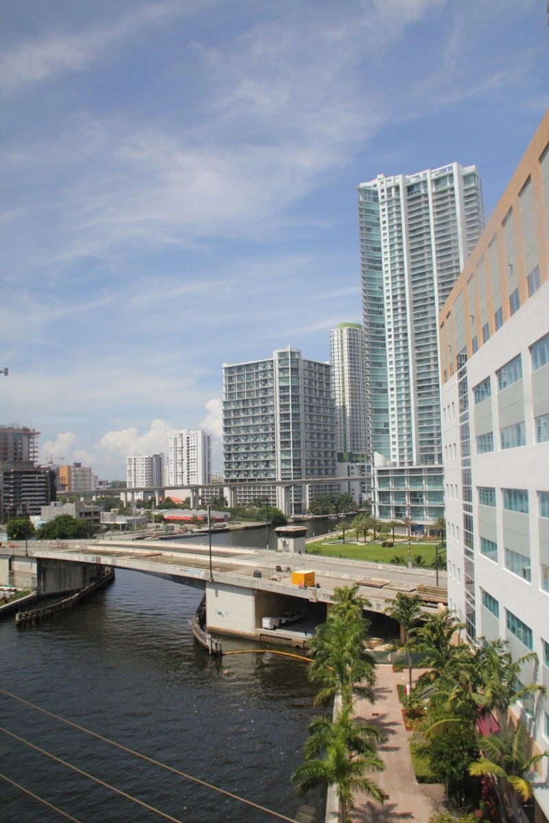 Le merveilleux voyage en Floride de Brenda et Rebecca en Juillet 2014 - Page 18 6116