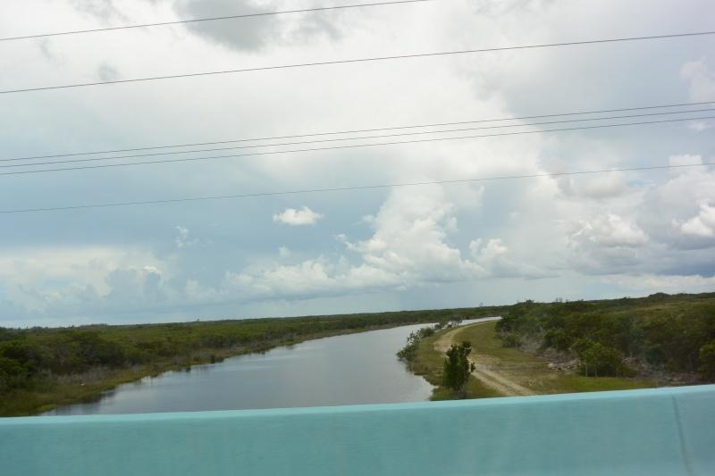 Le merveilleux voyage en Floride de Brenda et Rebecca en Juillet 2014 - Page 16 612