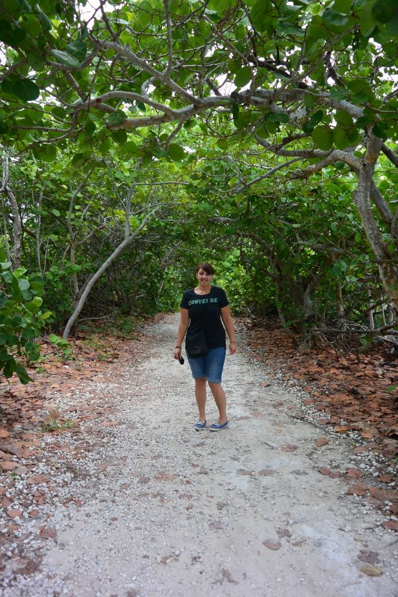 Le merveilleux voyage en Floride de Brenda et Rebecca en Juillet 2014 - Page 16 6611