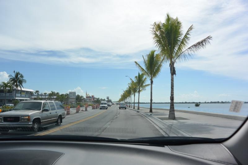 Le merveilleux voyage en Floride de Brenda et Rebecca en Juillet 2014 - Page 16 7211