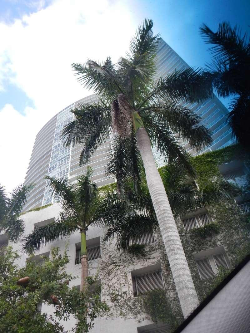 Le merveilleux voyage en Floride de Brenda et Rebecca en Juillet 2014 - Page 18 7712