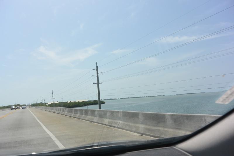 Le merveilleux voyage en Floride de Brenda et Rebecca en Juillet 2014 - Page 18 815