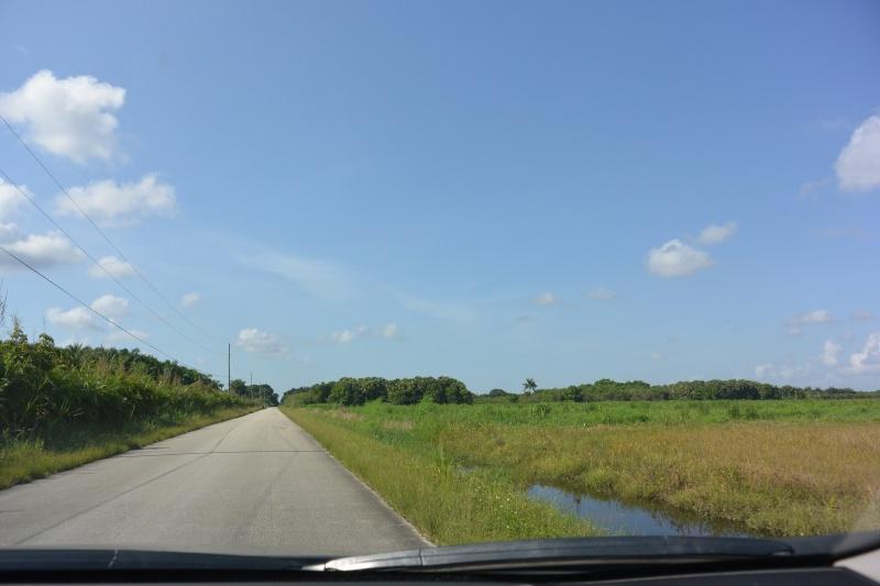 Le merveilleux voyage en Floride de Brenda et Rebecca en Juillet 2014 - Page 18 916
