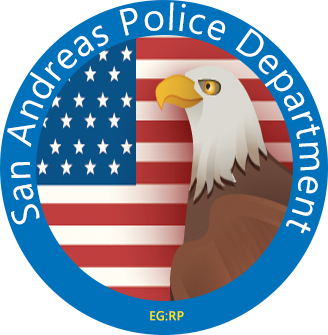 Chapter 4 - Procedures and Presentation Sapd212