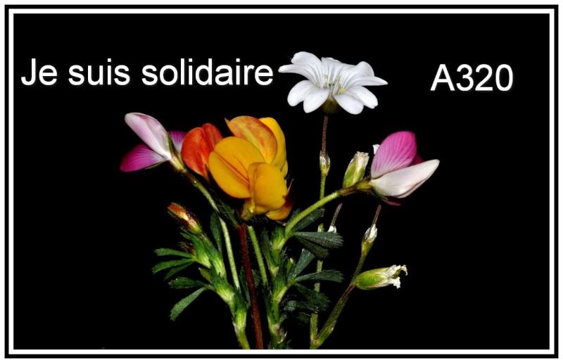 Je suis solidaire A320 D10