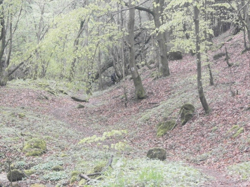 4° MILL-MAN-TRAIL (Luxembourg) - 26/04/2015 P4250017