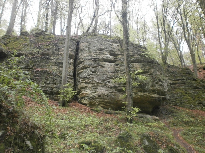 4° MILL-MAN-TRAIL (Luxembourg) - 26/04/2015 P4250019