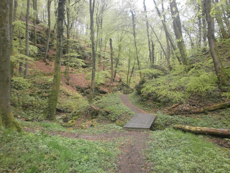4° MILL-MAN-TRAIL (Luxembourg) - 26/04/2015 P4250020