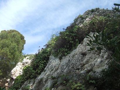 (06) Cap d'Antibes et parc de la Villa Eilenroc Dscf5629