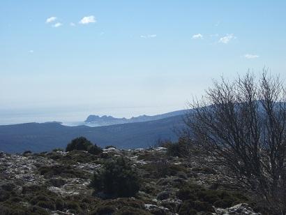 Massif de la Sainte-Baume (13 et 83)  Dscf5844