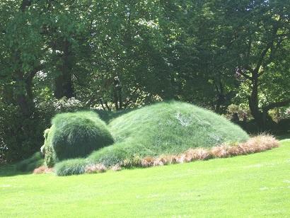 (44) Jardin des plantes - Nantes Dscf6347