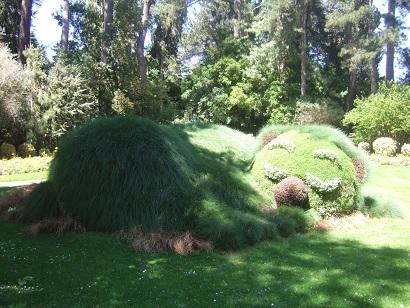 (44) Jardin des plantes - Nantes Dscf6348