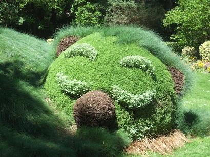 (44) Jardin des plantes - Nantes Dscf6349