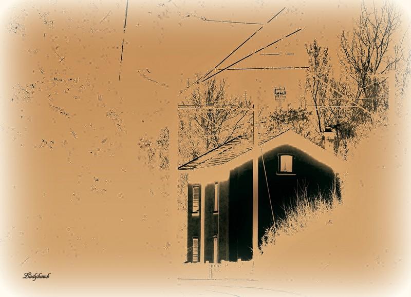 la maison dans le bois Img_0311