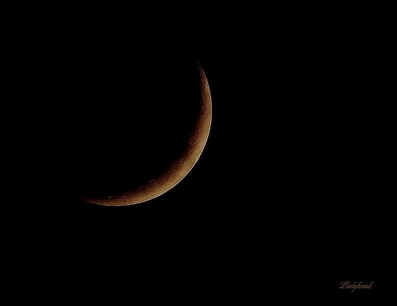 croissant de lune Img_6013