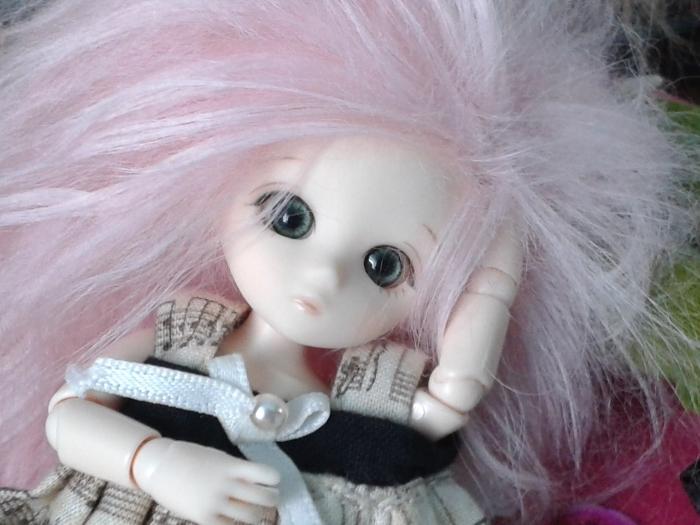 [Little Pullip, Obitsu] Galerie de Naud 20150311