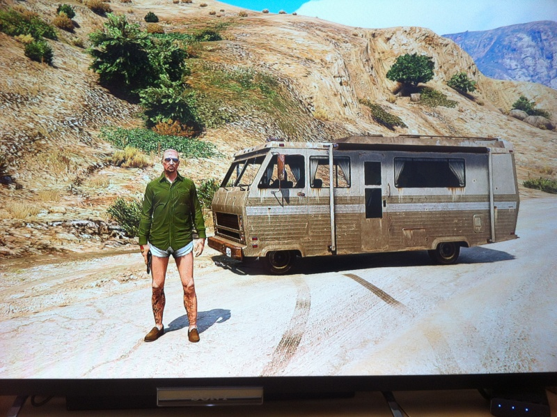 GTA V: Photos et selfies - Page 2 Img_3110