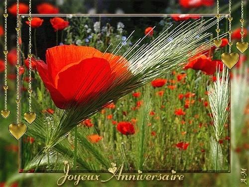 joyeux anniversaire Martine Annive10