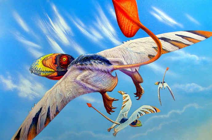 Los animales extintos más impresionantes que han existido Dimorp10