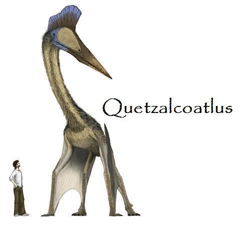 Los animales extintos más impresionantes que han existido Quetza10