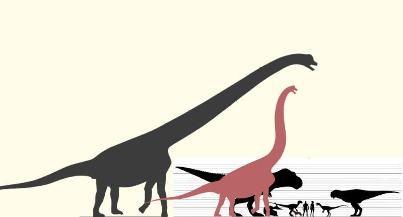 Los animales extintos más impresionantes que han existido Saurop10